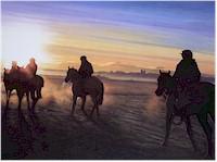 Chris Howells - Horse Racing Oils