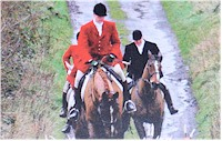 Horse Hunting Pictures