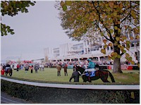 Irish Racecourse Pictures